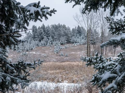 Clairville Conservation Area