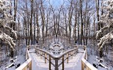 Heart Lake Conservation Park